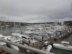 A view of the marina, on the way to the finish line!