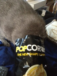 Who doesn't love popcorn?