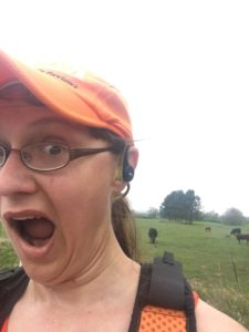 """Seriously, I just got lapped by a cow!"""